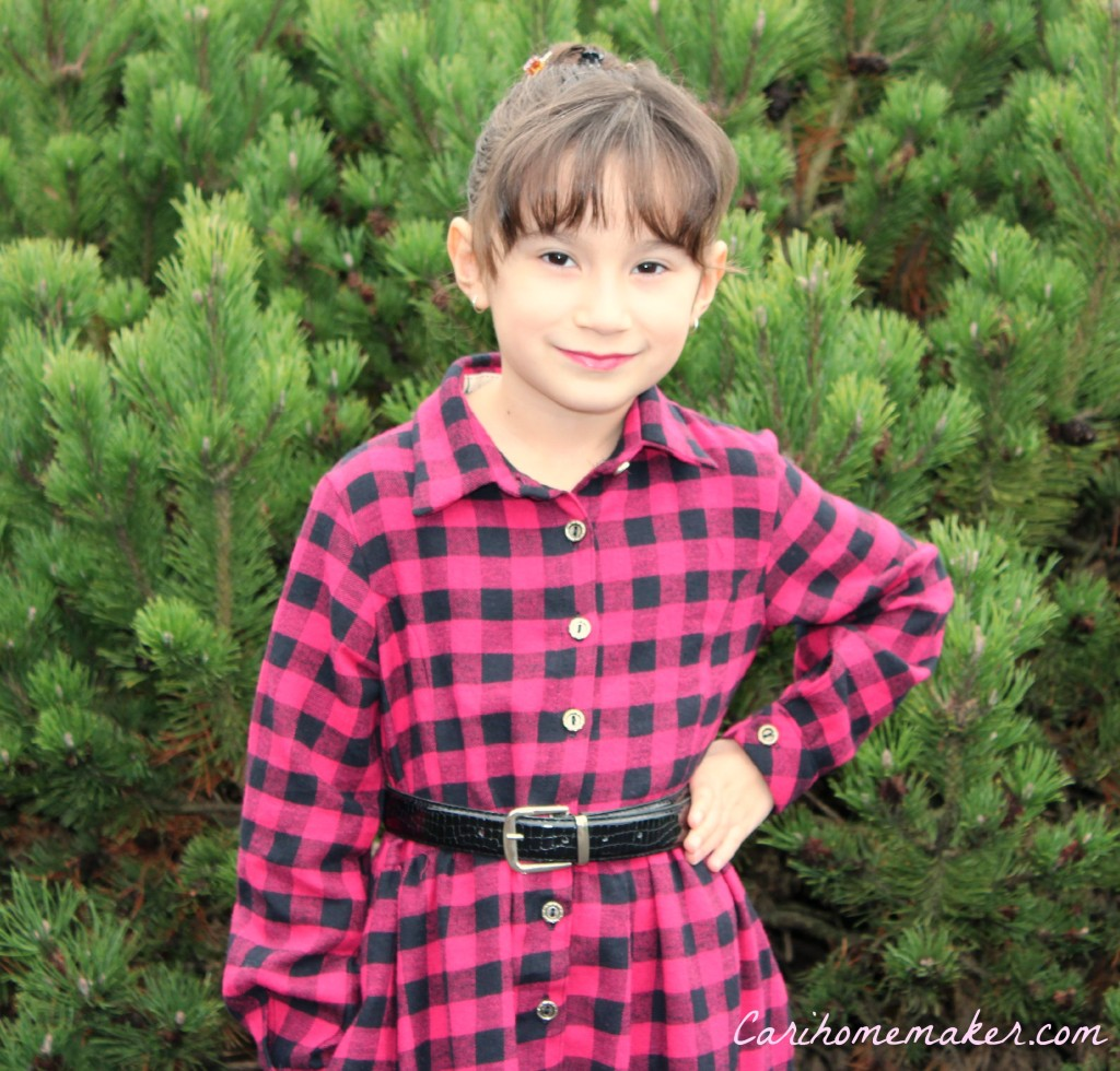 Flannel Dress 4